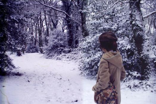 snowy landscape (3)